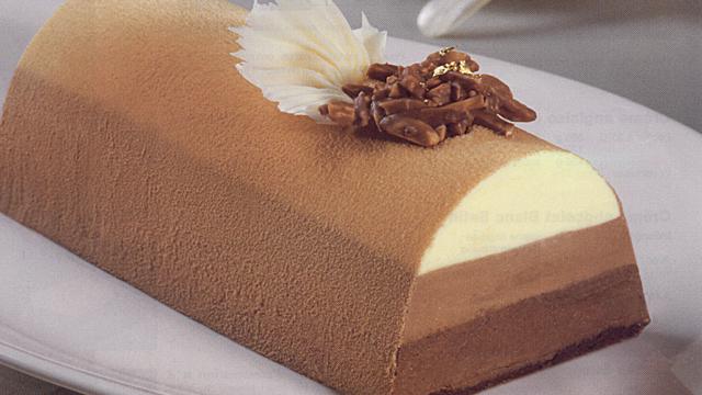 Buche glacee 3 chocolats